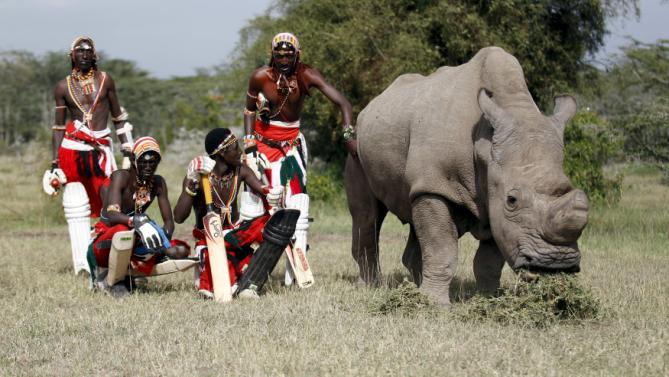 Members of the Maasai Cricket Warriors pose for a photohraph with the last surviving male northern white rhino named  'Sudan' after playing against the British Army Training Unit at the Ol Pejeta Conservancy in Laikipia national park, Kenya